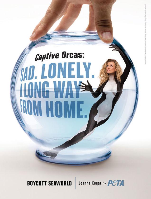 Joanna Krupa dla orek  rozbiera się w kampanii PETA