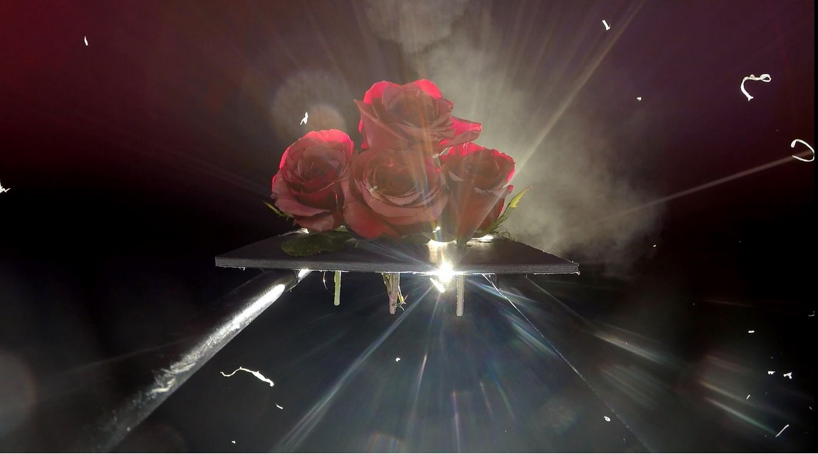 Kosmiczne rozne na Dzien Matki kwiaty, ktore odbyly pozaziemska podroz3